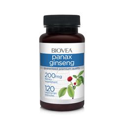 Ginseng Panax
