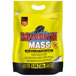 Mammoth Mass