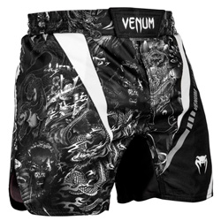 Art Fightshorts Black